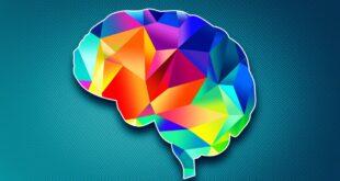 Mutluluk Hormonları Nelerdir?